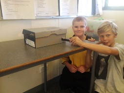 Science in year five